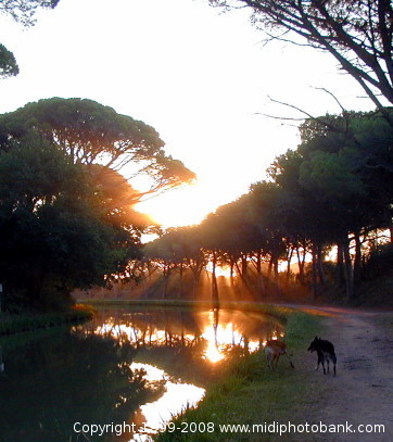 Early morning on the Canal du Midi